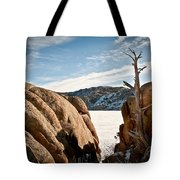 Weathered - Pathfinder Reservoir - Wyoming Tote Bag