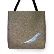 Weathered Feather  Tote Bag