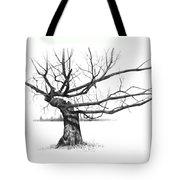 Weathered Old Tree Tote Bag