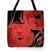 Weathered Poppies Tote Bag