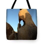 Weathered Rock Tote Bag