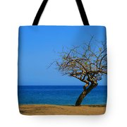 Weathered Tree Tote Bag