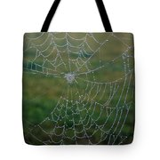 Web After The Storm Tote Bag