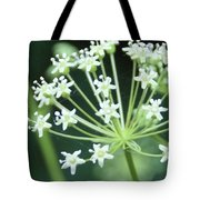 Web Design - 2 Tote Bag