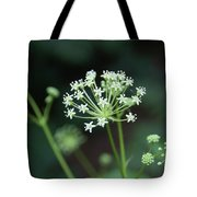 Web Design Tote Bag