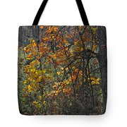 Web Of Color Tote Bag