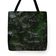 Webs Of A Tree Tote Bag
