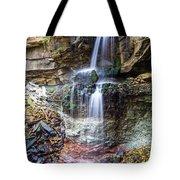 Webwood Falls Tote Bag