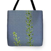Weed Seeds Tote Bag