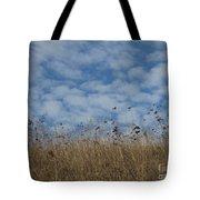 Weeds And Dappled Sky Tote Bag