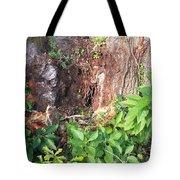 Weedy Beauty Tote Bag