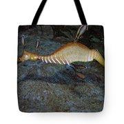 Weedy Sea Dragon Tote Bag