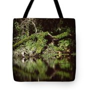 Weeki Wachee Springs Tote Bag