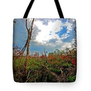 Weeks Bay Swamp Tote Bag