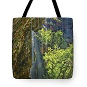 Weeping Rock - Zion Canyon Tote Bag