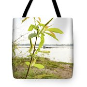 Weeping Willow Close To The River Tote Bag