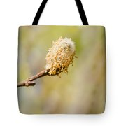 Weeping Willow Seed Tote Bag
