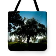 Weeping Willow Silhouette Tote Bag