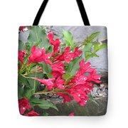 Weigela Florida Red Prince Tote Bag