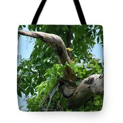Weighty Decisions Tote Bag