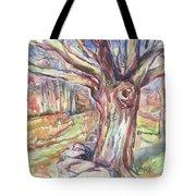 Weir Farm Oak Tree Tote Bag
