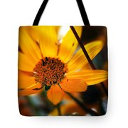 Welcome... Tote Bag