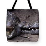 Welcome Come On In Tote Bag