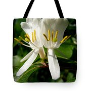 Welcome My Friends Tote Bag
