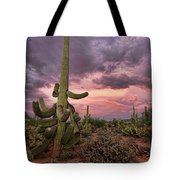 Well Armed At Dusk Tote Bag