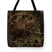 Well Hidden Nest Tote Bag
