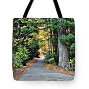 Wellesley College Walkway Tote Bag