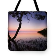 Wellington Point Sunset Tote Bag