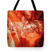 Wells Cathedral Gargoyles Color Negative B Tote Bag