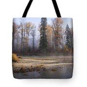 Wenatchee River, Fall 2015 Tote Bag