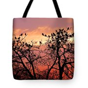 Wente Road Sunset Tote Bag