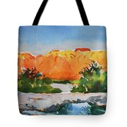 West Temple Zion Afternoon Tote Bag