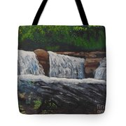 West Virgina Water Falls Tote Bag