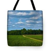 West Virginia Field  Tote Bag