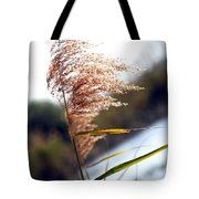 West Wind Today Tote Bag