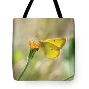 Wester Sulfur Butterfly Tote Bag
