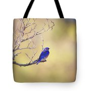 Western Bluebird On Bare Branch Tote Bag