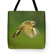 Western Kingbird Hovering Tote Bag