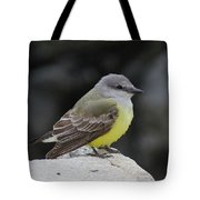 Western Kingbird Tote Bag