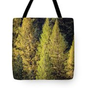 Western Larch Tote Bag