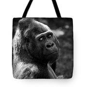 Western Lowland Gorilla Closeup Tote Bag