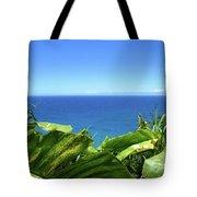Western Shore Kauai Tote Bag