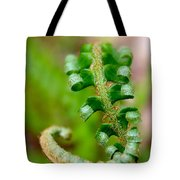 Western Swordfern Three Tote Bag