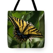 Western Tiger Swallowtail 2 Tote Bag