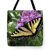 Western Tiger Swallowtail Butterfly Tote Bag by Daniel Hagerman