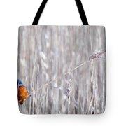 Weston Kingfisher Tote Bag